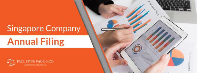 The Singapore Company Annual Filing