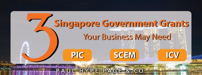 Singapore Government Grants