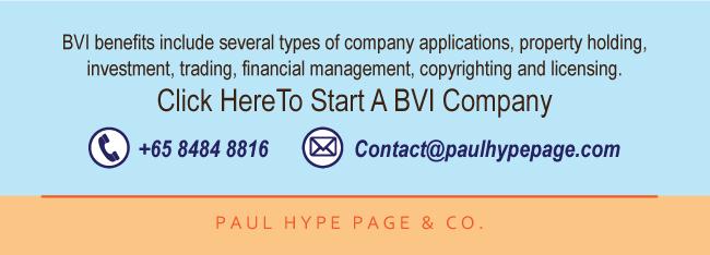 BVI Company