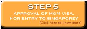Singapore Company Incorporation 5